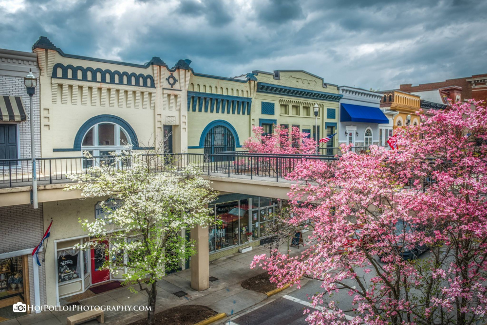 Main Street with blooming redbud trees.